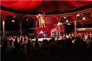 The Spiegeltent Performance View