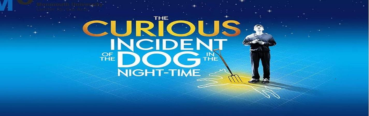 The Curious Incident of the Dog in the Night-Time - Troubadour Wembley Park Theatre